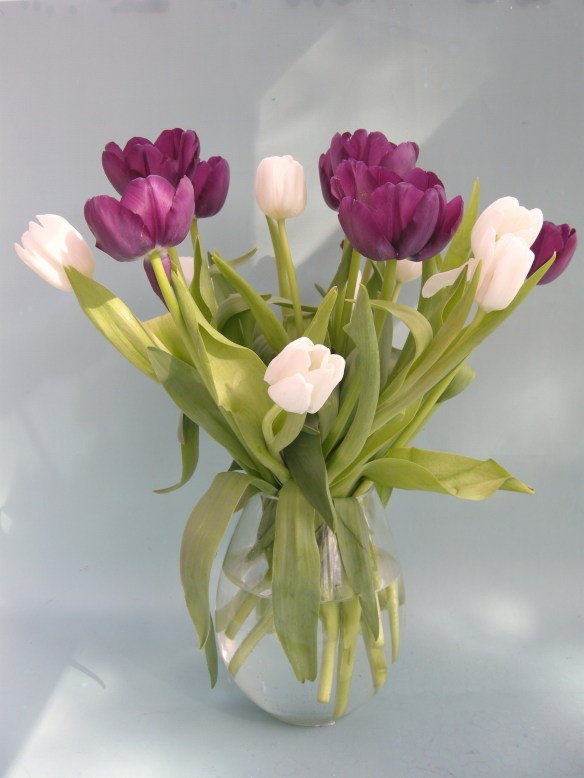 Birthday Flowers 001