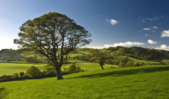 CountrysidegenericSML-1700x999