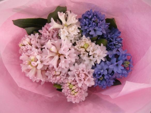 Petrana's Flowers 008