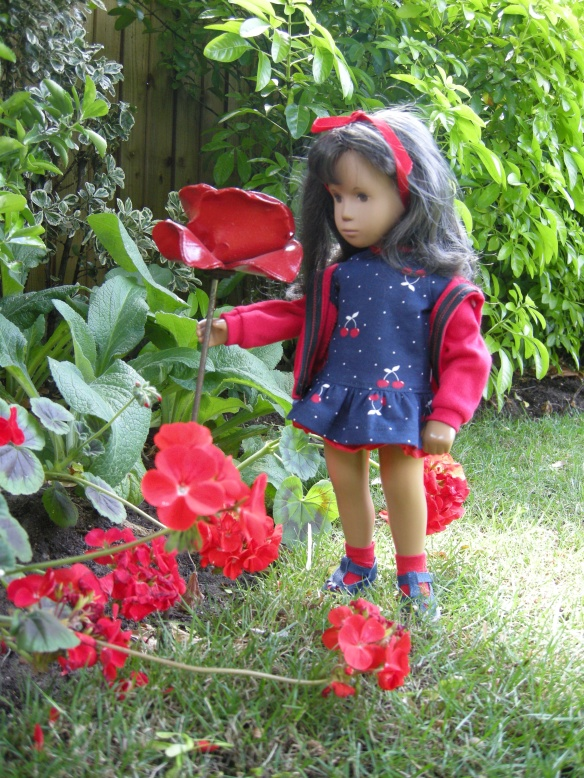 rememberence-poppy-003