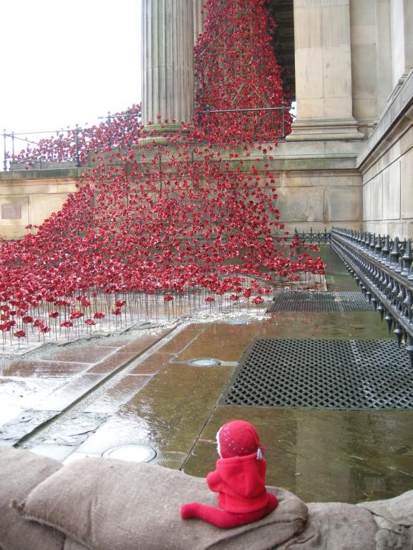 war-memorial-poppies-at-liverpool-008