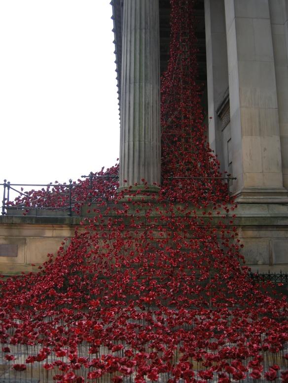 war-memorial-poppies-at-liverpool-010
