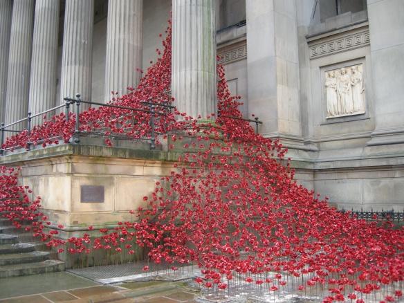 war-memorial-poppies-at-liverpool-011