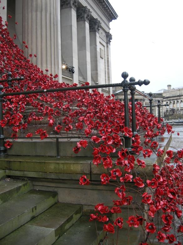 war-memorial-poppies-at-liverpool-013