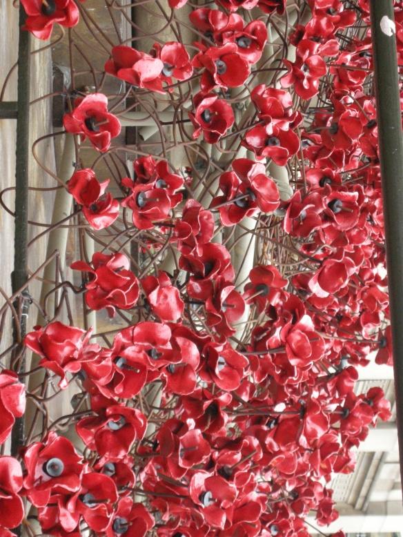 war-memorial-poppies-at-liverpool-024