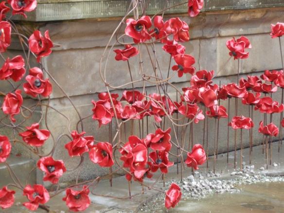war-memorial-poppies-at-liverpool-026