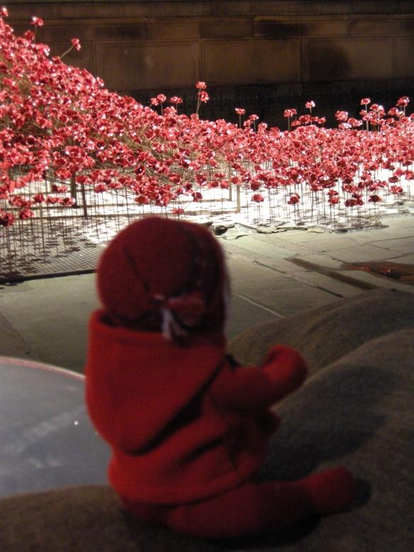 war-memorial-poppies-at-liverpool-033