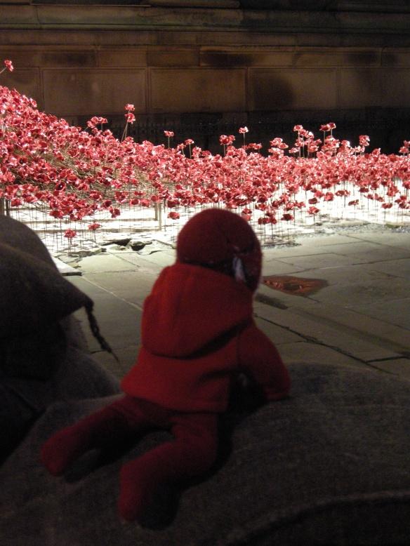 war-memorial-poppies-at-liverpool-034
