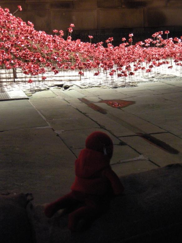 war-memorial-poppies-at-liverpool-035