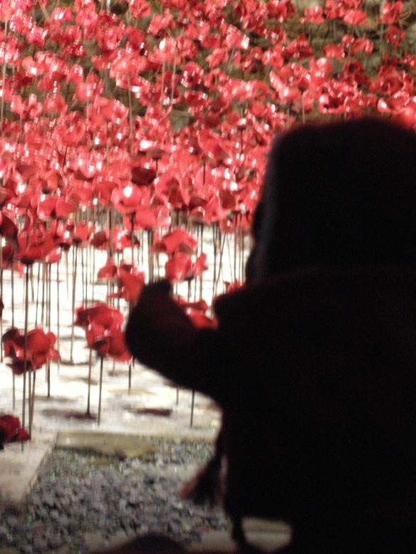 war-memorial-poppies-at-liverpool-039