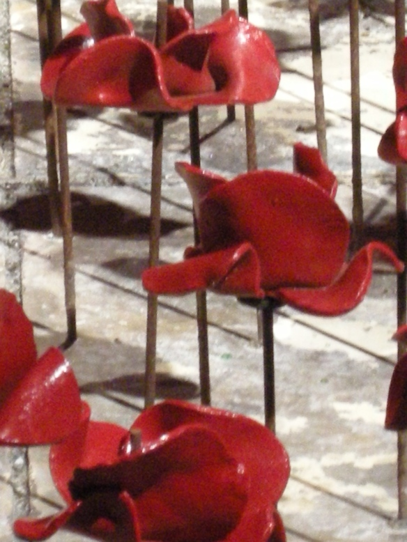 war-memorial-poppies-at-liverpool-042